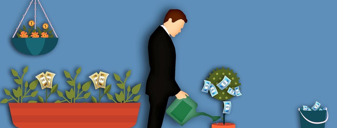 Comment faire pousser un arbre à argent