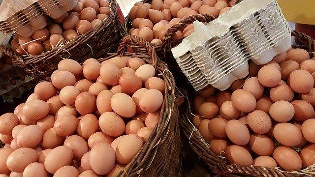 ne mettre tous ses œufs dans le même panier